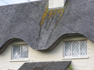 A Damaged Roof Needing Repair or Replacement