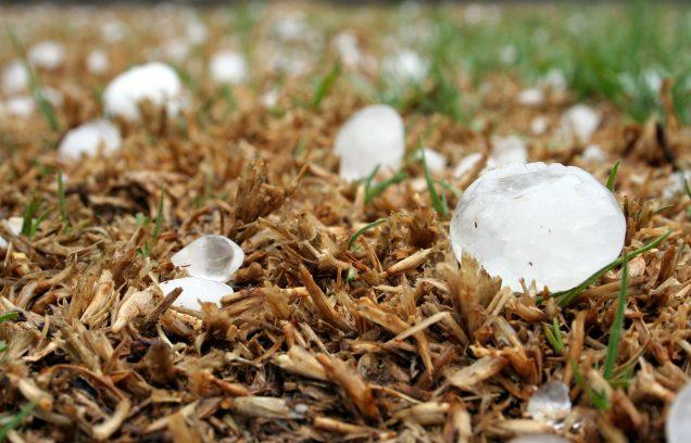 hailstone in North Texas